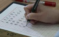第五单元《硬笔楷书左右、左中右结构合体字的写法》第八节 左窄右宽(8):反犬旁、牛字旁、虫字旁