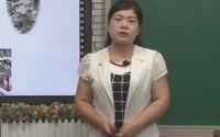 高中语文选修中国古代诗歌散文欣赏第二单元复习课《扬州慢》