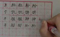 第五单元《硬笔楷书左右、左中右结构合体字的写法》第三节 左窄右宽(3):米字旁、食字旁、示字旁、衣字旁