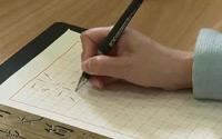 第一单元《初识书法》第二节 硬笔部分学习内容简介:铅笔的选择、使用、养护;铅笔的执笔要领、运笔方法、书写姿势
